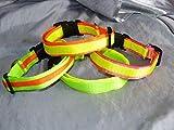 Hunde Halsband aus zweilagigem Neongurtband