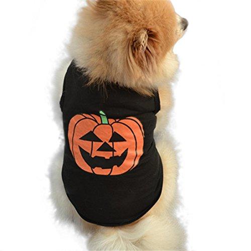 Halloween Haustier Hundekleidung, Hmeng Kürbis Muster Pullover Weste Baumwolle Schwarz T-Shirt (L, Schwarz)