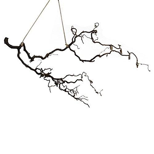 Dekozweig mit Seil: Deko-Korkenzieher-Äste zum hängen - Frühlingsdeko - kleiner Ast zum Aufhängen - Osterdeko Vintage (1 Ast ca. 40cm lang; ca. 25 cm breit)