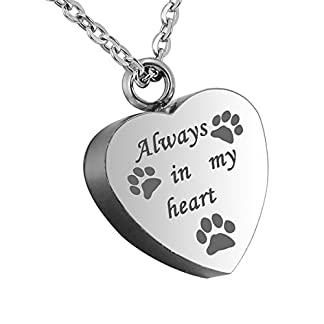 "HooAMI ""Forever in my heart Pet Paw Heart Urn Pendant Necklace- Memorial Ashes Keepsake - Cremation Jewellery (Normal) 22"