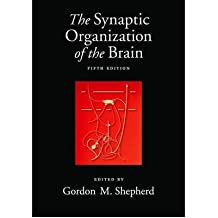 [The Synaptic Organization of the Brain, 5th Edition [ THE SYNAPTIC ORGANIZATION OF THE BRAIN, 5TH EDITION BY Shepherd, Gordon M. ( Author ) Nov-06-2003[ THE SYNAPTIC ORGANIZATION OF THE BRAIN, 5TH EDITION [ THE SYNAPTIC ORGANIZATION OF THE BRAIN, 5TH EDITION BY SHEPHERD, GORDON M. ( AUTHOR ) NOV-06-2003 ] By Shepherd, Gordon M. ( Author )Nov-06-2003 Hardcover