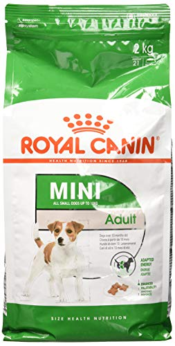 Royal Canin 35205 Mini Adult - Hundefutter, 1er Pack (1 x 2 kg)