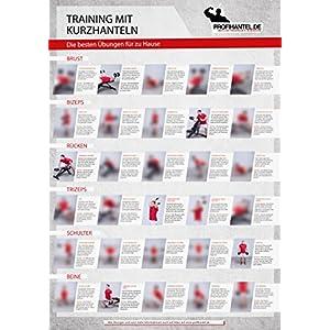 Das große XXL-Übungsposter von Profihantel, die 30 effektivsten Übungen mit der Kurzhantel, inklusive Trainingsratgeber und Trainingsplan