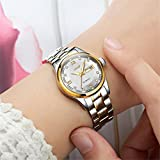 Ms Mechanical Watch Stainless Strap Transparent Bottom Cover Calendar Luminous 30 Meters Waterproof Watch , White