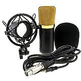 Il set contiene: 1x microfono, 1x staffa, 1x microfono microfono realizzata Protector di vento, 1x cavo di alimentazione