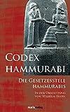 Codex Hammurabi: Die Gesetzesstele Hammurabis - Hammurabi