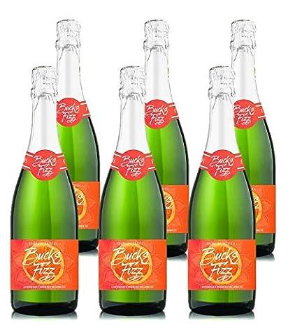 Cool Line Buck Fizz Ginger Wine 75 cl (Case of