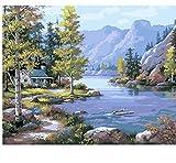 OKOUNOKO Peinture Au Numéro Rivières De Montagne Bricolage Peinture par Numéros...