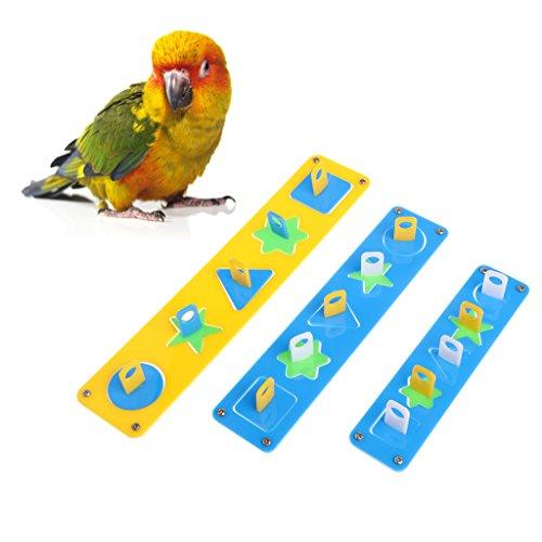 Autone Parrot Toys-Design puzzle Building Block Birds Playing training intellettuale, S