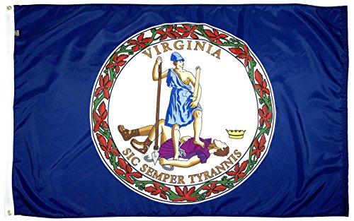 Flagsource-Virginia Nylon State Flagge-'Stolz Made in USA (3x 5') -