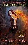 Burn the Night: The Final Dark Days Novel (Dark Days Series)