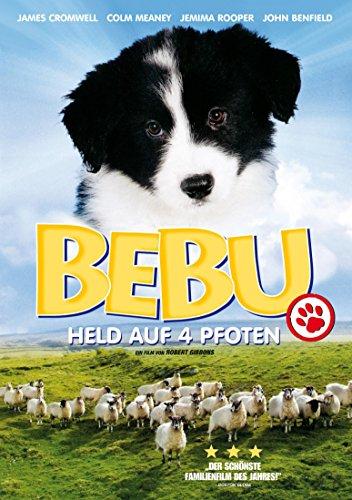 Bebu - Held auf 4 Pfoten