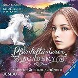Pferdeflüsterer-Academy. Eine gefährliche Schönheit (Die Pferdeflüsterer-Academy)