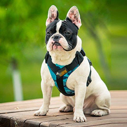 Jinmao Brustgeschirr Hundeleine mittlerer Hund großer Hund Leine Hundegeschirr Hund Weste Hund Kette,A,XL