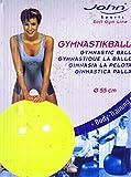 John–Balón de ejercicios estándar 55cm Amarillo