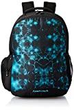 Fastrack 30.68 Ltrs Blue Casual Backpack (A0672NBL01)