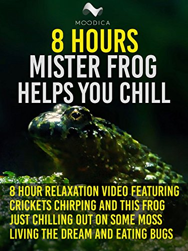 8 Hours: Mister Frog Helps You Chill: 8 Hour Relaxation Video Featuring Crickets Chirping and This Frog Just Chilling Out On Some Moss Living The Dream and Eating Bugs [OV] (Cricket Videos)