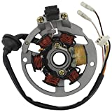 Xfight-Parts Ankerplatte mit 6 Spulen D 83mm Pick-up aussenliegend 5 Kabel 1x3 und 2x1 Pol.mit 1 Isolierten Spule 2Takt 50ccm liegender Minarelli Motor AC/LC ABR-31120-116-000 für Kreidler F-Kart 100