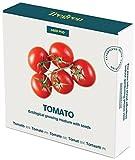 Tregren Kit de graines Tomates Cerises pour Potager d'intérieur autonome - Kit d'une...