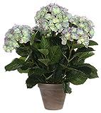 MICA Decorations 947274 Blumen, Hydrangea, violett