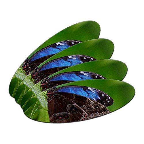 Schöne blaue Schmetterling auf Blatt doppelseitig oval Nagelfeile Emery Board 4Stück