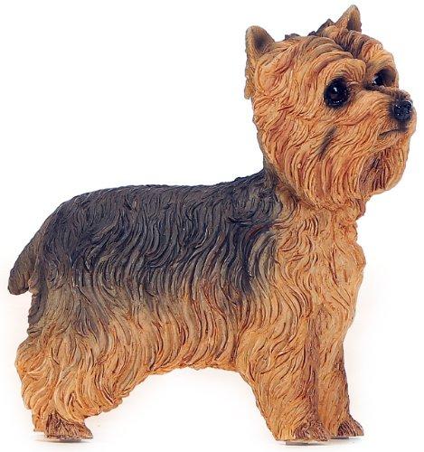 Greetingsbox Animal Figurines Yorkshire Terrier Figurine décorative en Forme de Chien