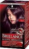 Schwarzkopf Brillance Intensiv-Color-Creme, 903 Absolut Violett Stufe 3, 3er Pack (3 x 143 ml)