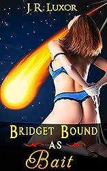 Bridget Bound as Bait (Bridget Series Book 4)