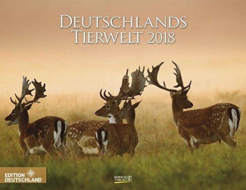 Deutschlands Tierwelt 2018: PhotoArt Wandkalender. Bildkalender über wilde Tiere in der Natur in Deutschland. Querformat: 44x34 cm
