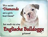 Blechschild / Warnschild / Türschild - Aluminium - 15x20cm - - Motiv: Englische Bulldogge - Wer meint Diamonds are a girls best friend... -- 02