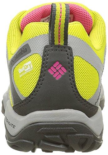 Columbia Peakfreak Xcrsn Ii Xcel Low Outdry, Chaussures de Randonnée Basses Femme Vert (Gingko/Afterglow 367)