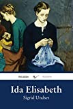 Ida Elisabeth (Roman)