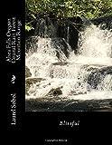 Alsea Falls Oregon Coastal Rain Forest Mountain Range