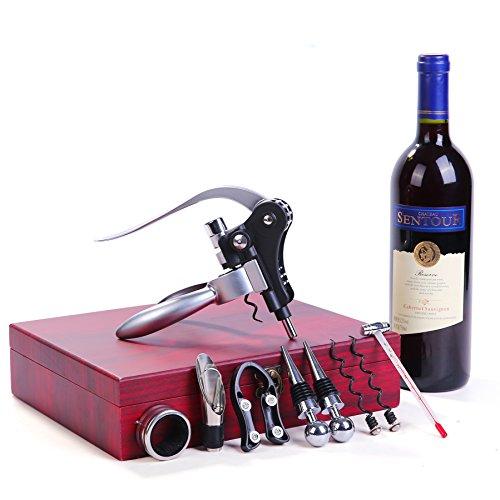 Sengvan Weinflaschen-Set mit 9 Teilen aus Edelstahl, mit Geschenk-Box