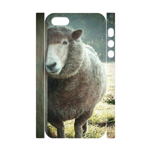 LP-LG Phone Case Of Sheep For iPhone 5,5S [Pattern-6] Pattern-5