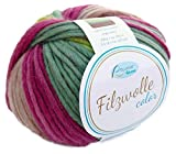 Filzwolle Color Rellana Fb. 106, Filzwolle zum Stricken Altrosa Beere grün, mit Farbverlauf