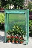 Anaelle Panana Serre de Jardin Balcon Terrasse Transportable, Taille: 100 x 50 x 150cm, Poids: 4kg, Vert...