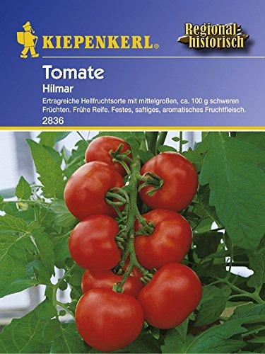 Kiepenkerl Tomate Hilmar