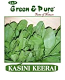 Green & Pure - High Yield Organic Vegetable Seeds - Kasini Keerai - 5 Packs ( 5 X 20g ) for Kitchen / Terrace / Home Garden