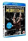 Shawn Michaels - Mr..