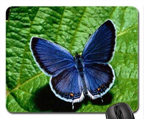 BLUE VELVET Mouse Pad, Mousepad (Butterflies Mouse Pad) -