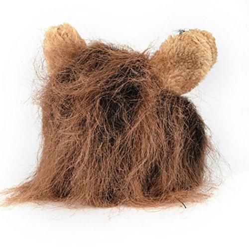 greatfun Furry Pet Hat Kostüm Löwe Mähne Perücke für Katze Halloween Kleid bis mit Ohren Party (Perücken Rabatt Halloween)
