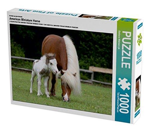 Ein Motiv aus dem Kalender American Miniature Horse 1000 Teile Puzzle quer (CALVENDO Tiere Preisvergleich