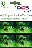 DCS (048)10 Aquarium Grass Seeds Water G...