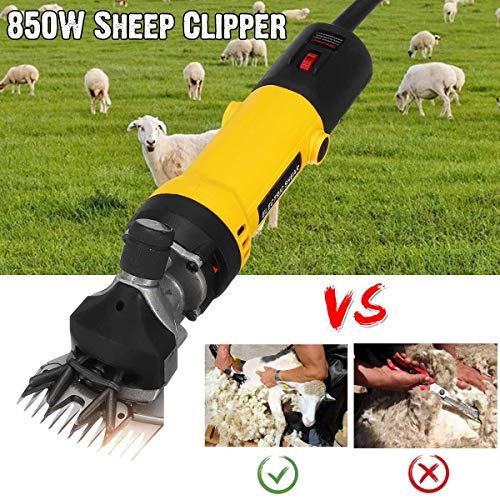chermaschine Elektrische Schafschere Set Schermaschine für Schafe 850W, 6 Gänge Geschwindigkeit 13 Zähne Klinge ()