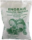 Florendi Jardin Engrais Tomates/Fraisiers/Petits Fruits - Blanc 13 x 5 x 25 cm