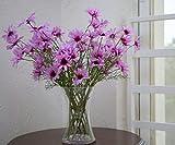 Flowerfest Violet Butterflies Flower Arrangement