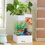 Aolvo Aquaponic Betta Fish Tank, mini Water Garden Fish Tank con luci LED colorati, Cube acquario starter kit, kit per acquari decorazione della casa, scrivania, bar top, davanzale Water Garden White