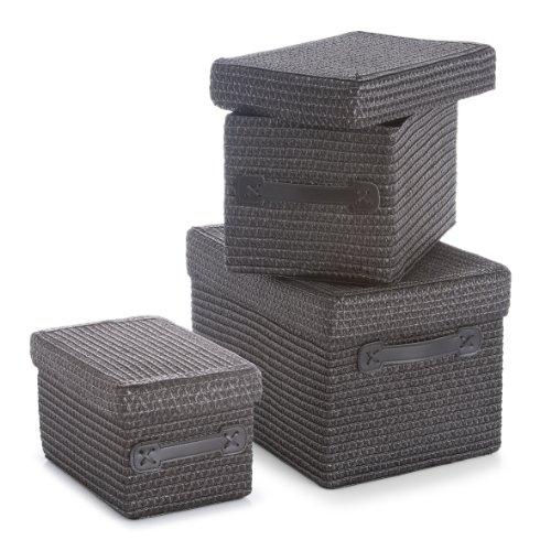 zeller-14088-3-piece-polypropylene-basket-set-with-lid-36-x-26-x-24-cm-30-x-22-x-20-cm-26-x-18-x-16-