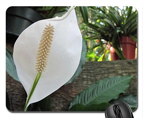 spring-blooms-14-lily-mouse-pad-mousepad-flowers-mouse-pad